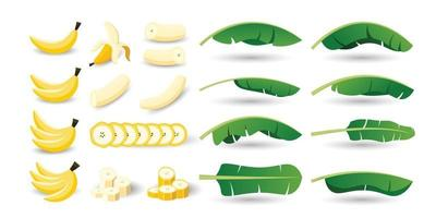 Set of banana fruits and leaves vector