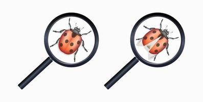 magnifying glass found a bug vector