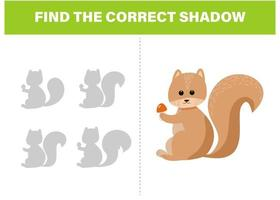 Find the correct shadow Cute squirrel activity template vector