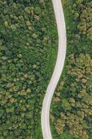 Aerial top view of pathway road in forest, view from drone photo