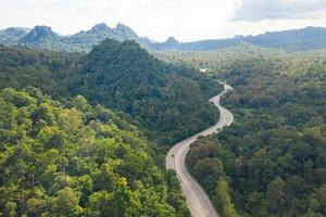 Aerial view of pathway road in forest, view from drone photo