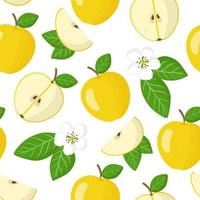 Vector cartoon seamless pattern with Malus domestica or Yellow apple exotic fruits, flowers and leaf on white background