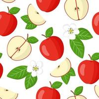 Vector cartoon seamless pattern with Malus domestica or Red apple exotic fruits, flowers and leafs on white background