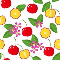 Vector cartoon seamless pattern with Acerola exotic fruits, flowers and leafs on white background