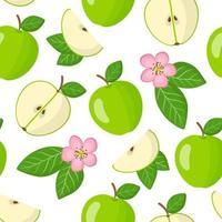 Vector de dibujos animados de patrones sin fisuras con malus domestica o manzana verde frutas exóticas, flores y hojas sobre fondo blanco.