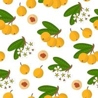 Vector cartoon seamless pattern with Eriobotrya japonica or Medlar exotic fruits, flowers and leafs on white background