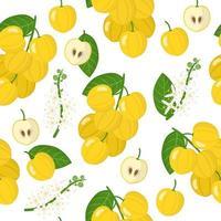 Vector cartoon seamless pattern with Acronychia acidula fruits, flowers and leaf on white background