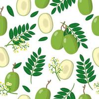 Vector cartoon seamless pattern with Spondias dulcis or Ambarella exotic fruits, flowers and leafs on white background