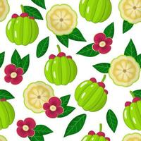 Vector cartoon seamless pattern with Garcinia or monkey fruit exotic fruits, flowers and leafs on white background