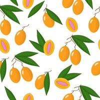 Vector cartoon seamless pattern with Bouea macrophylla or gandaria exotic fruits and leafs on white background