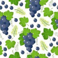 Vector de dibujos animados de patrones sin fisuras con vitis vinifera o uva blanca frutas exóticas, flores y hojas sobre fondo blanco.