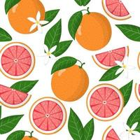 Vector cartoon seamless pattern with Citrus paradisi or Grapefruit exotic fruits, flowers and leafs on white background