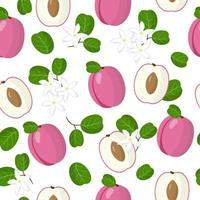 Vector cartoon seamless pattern with Chrysobalanus icaco plum exotic fruits, flowers and leafs on white background