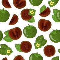 Vector de dibujos animados de patrones sin fisuras con diospyros-nigra o zapote negro frutas exóticas flores y hojas sobre fondo blanco.