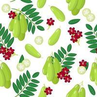 Vector de dibujos animados de patrones sin fisuras con bilimbi o pepino frutas exóticas, flores y hojas sobre fondo blanco.