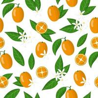 Vector cartoon seamless pattern with Fortunella or Kumquat exotic fruits, flowers and leafs on white background
