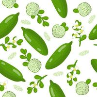 Vector cartoon seamless pattern with Australian finger caviar lime exotic fruits, flowers and leafs on white background