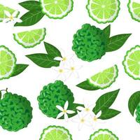 Vector cartoon seamless pattern with Citrus bergamia or the bergamot exotic fruits flowers and leafs on white background