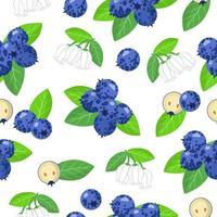 Vector de dibujos animados de patrones sin fisuras con arándanos frutas exóticas, flores y hojas sobre fondo blanco.