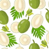 Vector cartoon seamless pattern with Artocarpus altilis or Breadfruit exotic fruits flowers and leaf on white background