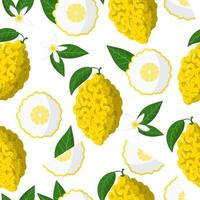 Vector cartoon seamless pattern with Citrus medica or Citron exotic fruits, flowers and leafs on white background