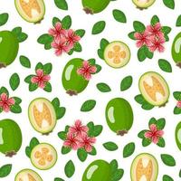 Vector cartoon seamless pattern with Acca sellowiana or Feijoa exotic fruits, flowers and leafs on white background