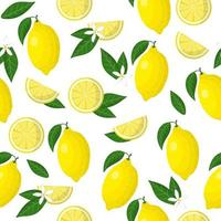 Vector cartoon seamless pattern with Citrus limon or Lemon exotic fruits, flowers and leafs on white background