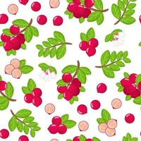 Vector cartoon seamless pattern with lingonberry exotic fruits, flowers and leafs on white background