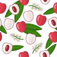 Vector cartoon seamless pattern with Lychee chinese exotic fruits, flowers and leafs on white background