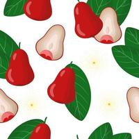 Vector cartoon seamless pattern with Syzygium aqueum or jambu exotic fruits, flowers and leafs on white background