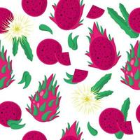 Vector cartoon seamless pattern with Dragonfruit or Sweet Red Pitaya exotic fruits, flowers and leaf on white background