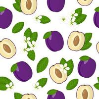 Vector cartoon seamless pattern with Prunus domestica or purple Plum exotic fruits, flowers and leaf on white background