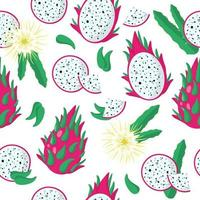 Vector cartoon seamless pattern with Hylocereus or dragonfruit exotic fruits, flowers and leafs on white background