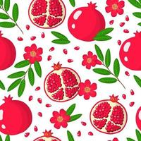 Vector cartoon seamless pattern with Pomegranate or Punica exotic fruits, flowers and leafs on white background