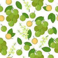 Vector cartoon seamless pattern with Melicoccus or Mamonchillo exotic fruits, flowers and leafs on white background