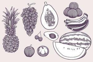 Hand drawn vegan food icons doodle set such as grape, banana, apple, watermelon, cherry, orange, papaya, banana etc. Decorative retro style collection farm product restaurant menu, market label. vector