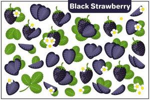 Conjunto de ilustraciones de dibujos animados vectoriales con frutas exóticas de fresa negra, flores y hojas aisladas sobre fondo blanco vector