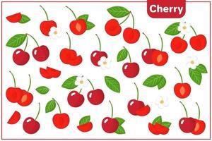conjunto de ilustraciones de dibujos animados de vectores con frutas exóticas cereza, flores y hojas aisladas sobre fondo blanco