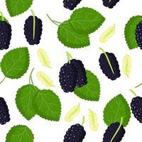 Vector de dibujos animados de patrones sin fisuras con morus negro o moras frutas exóticas, flores y hojas sobre fondo blanco.