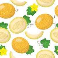 Vector de dibujos animados de patrones sin fisuras con cucumis melo o melón frutas exóticas, flores y hojas sobre fondo blanco.