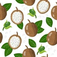Vector cartoon seamless pattern with marang exotic fruits, flowers and leafs on white background