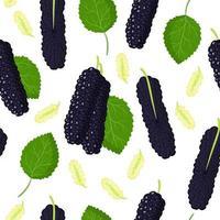 Vector de dibujos animados de patrones sin fisuras con frutas exóticas híbridas de morera negra, flores y hojas sobre fondo blanco.