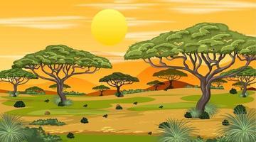 African Savanna forest landscape scene at sunset vector