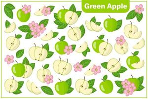 Set of vector cartoon illustrations with Green apple exotic fruits, flowers and leaves isolated on white backgroundv