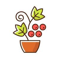 Berry shrubs and vines RGB color icon vector