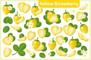 Set of vector cartoon illustrations with Yellow Strawberry exotic fruits, flowers, leaves isolated on white background