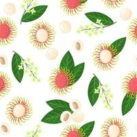 Vector cartoon seamless pattern with Nephelium lappaceum or Rambutan exotic fruits, flowers and leaf on white background