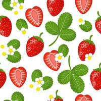 Vector cartoon seamless pattern with red garden Strawberry exotic fruits, flowers and leafs on white background
