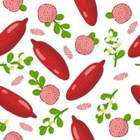 Vector cartoon seamless pattern with Citrus red fingerlime exotic fruits, flowers and leafs on white background