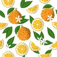 Vector cartoon seamless pattern with Citrus Bitter orange exotic fruits, flowers and leafs on white background